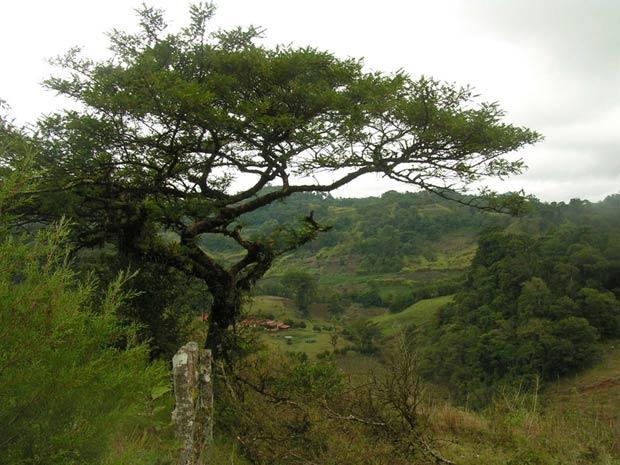 JINOTEGA - NICARAGUA